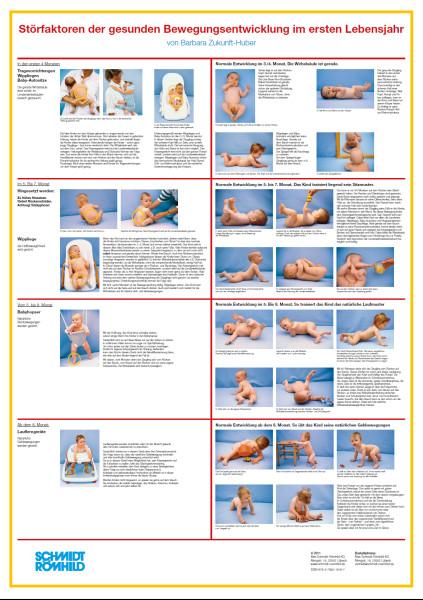 Störfaktoren der gesunden Bewegungsentwicklung im ersten Lebensjahr (Poster, 2. aktualis.Aufl.)